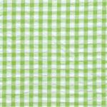 Seersucker Check Fabric - Lime Green | Green Seersucker Fabric