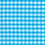 Cotton Seersucker Fabric - Turquoise Check - Wholesale - WS-S22