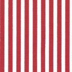 Stripe Print Fabric