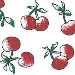 Cherry Print Fabric