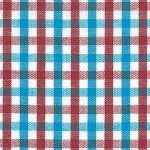 Turquoise and Red Check Fabric