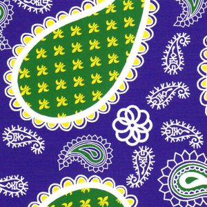 Purple and Green Paisley Fabric | Wholesale Paisley Fabric
