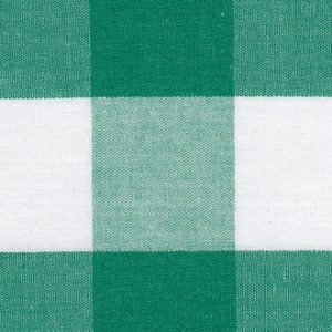 Kelly Green Gingham Fabric - 1″