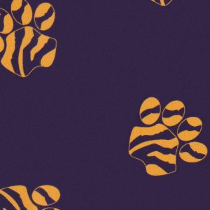 Gold and Purple Paw Print Fabric | Paw Print Fabric Wholesale
