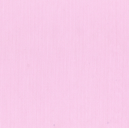 Pink Pique Fabric - Tea Rose | Cotton Pique Fabric Wholesale