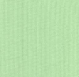 Pistachio Green Fabric | Cotton Pique Fabric