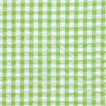 Seersucker Check Fabric - Lime Green | Green Seersucker Fabric